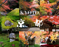 京都枫旅 | 凉风有信,去京都赴一场红叶狩(私藏小众追枫攻略)