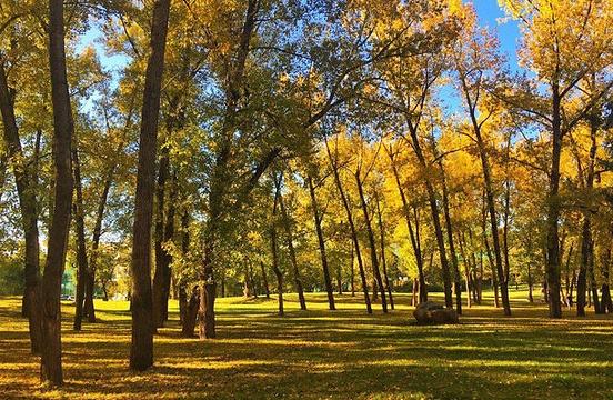 延吉公园旅游景点图片