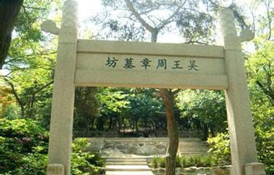 周章墓旅游景点图片