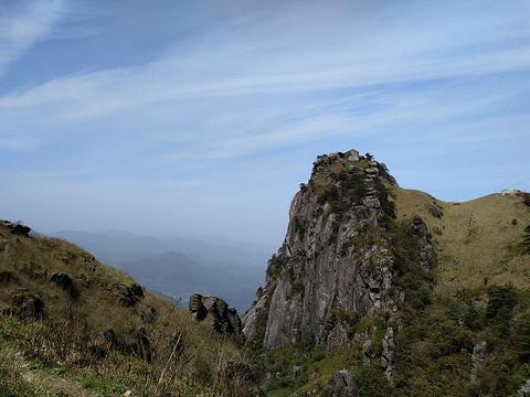巨猿啸天旅游景点图片