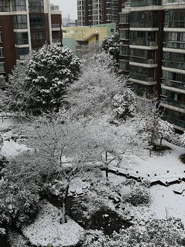 惠民文化广场
