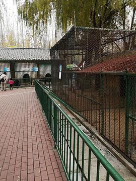 蒲园动物园的图片