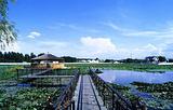 宁江森林公园
