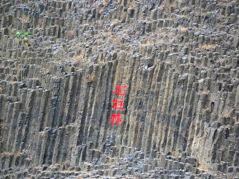 桂子山石柱林旅游景点图片