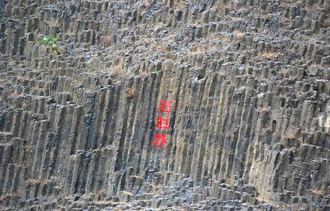 桂子山石柱林的图片
