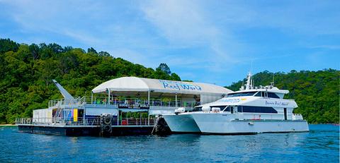 婆罗洲大堡礁