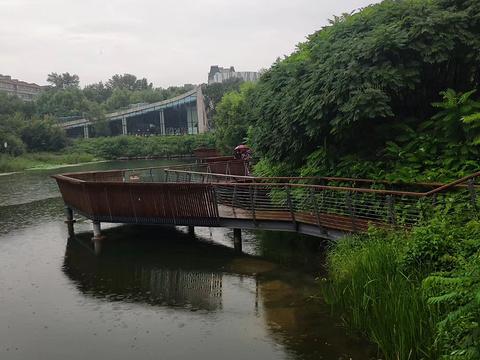 长春水文化生态园旅游景点图片