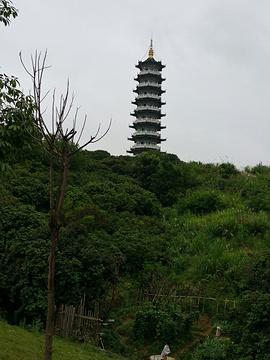 文峰塔的图片