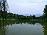 张家山公园