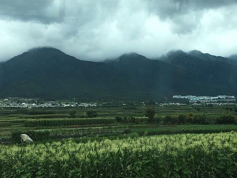 金花扎染坊旅游景点图片