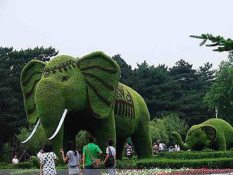 长春动植物公园旅游景点图片