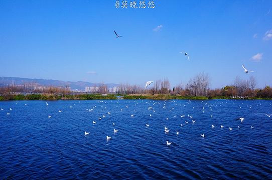滇池旅游景点图片
