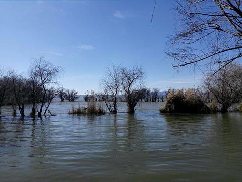 梧州大爽河生态游乐景区旅游景点图片
