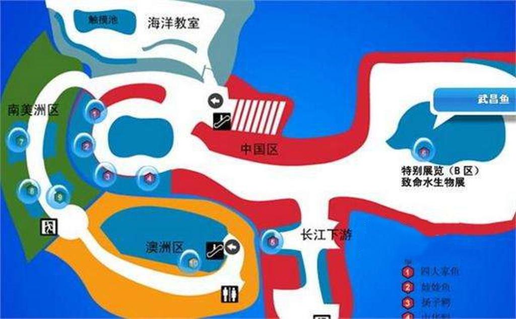 上海海洋水族馆旅游导图