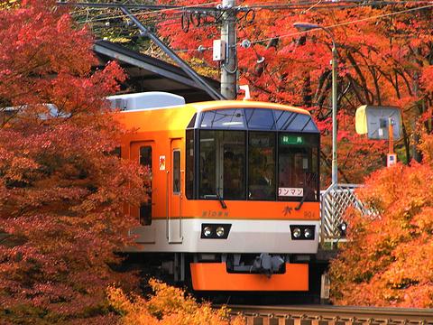 睿山电车红叶隧道的图片