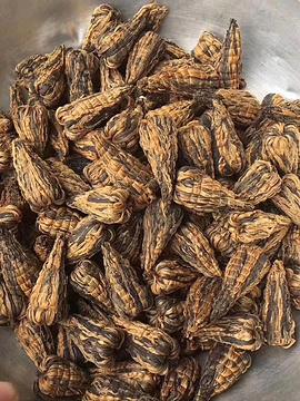 灵燕茶庄的图片