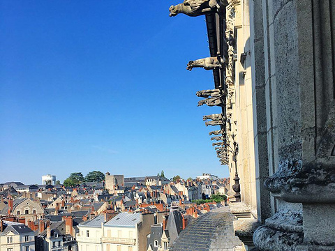 Chateau de Blois旅游景点图片