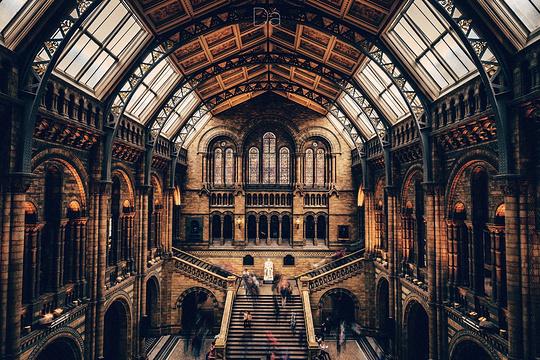 自然历史博物馆旅游景点图片