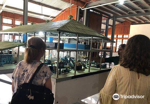 锡兰茶博物馆旅游景点图片