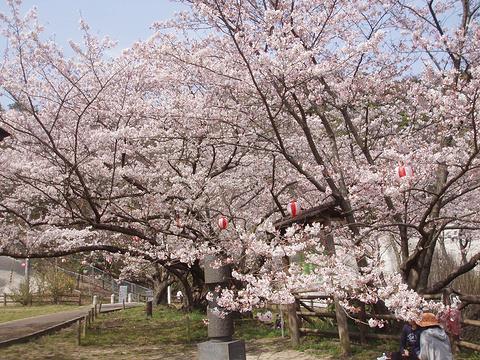 熊取町旅游图片