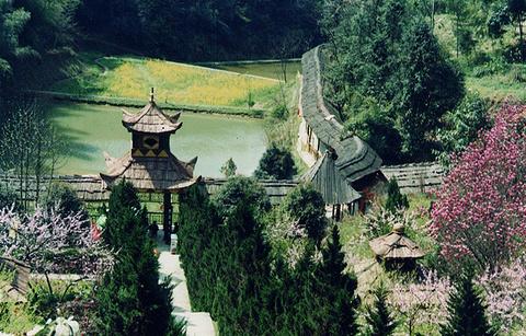 秦人村景区的图片
