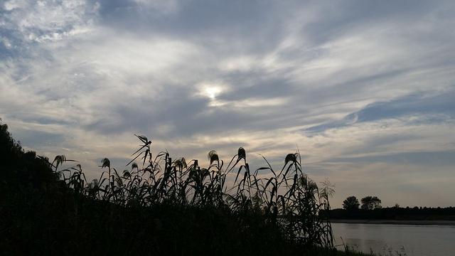 鱼嘴湿地公园旅游景点图片