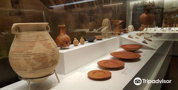 Museo del Vino Malaga旅游景点图片