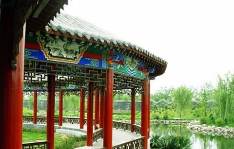 濮阳毛楼生态旅游区