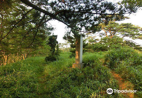 菊川市旅游图片