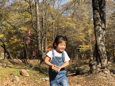 三道关国家森林公园旅游景点图片