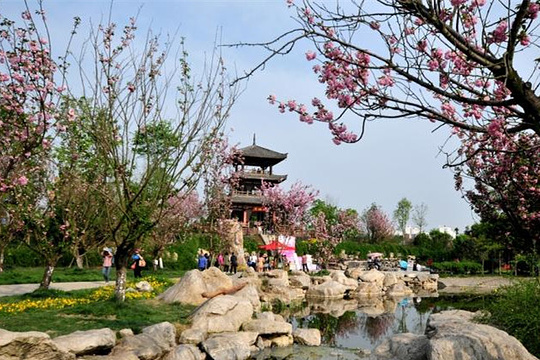 凤凰湖湿地公园旅游景点图片