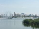 东营清风湖