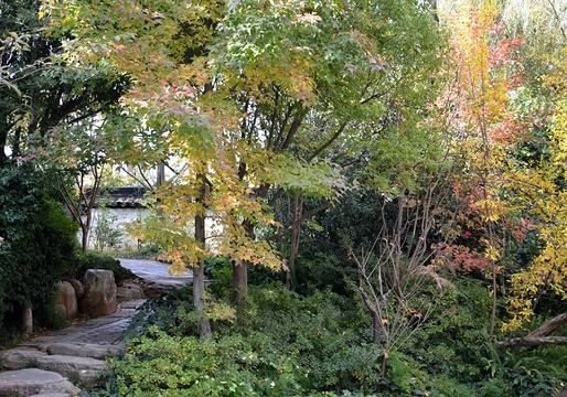莲花池公园旅游景点图片