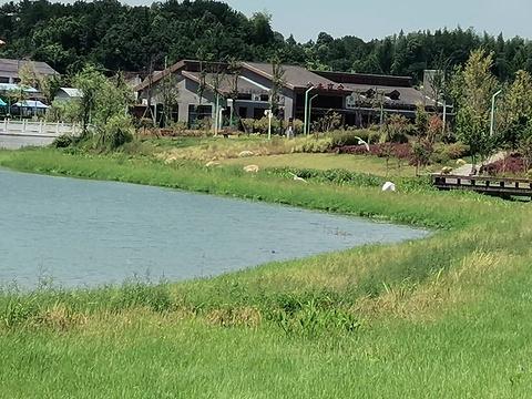金井镇石壁湖公园旅游景点图片