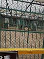 棋盘山森林野生动物园游乐场