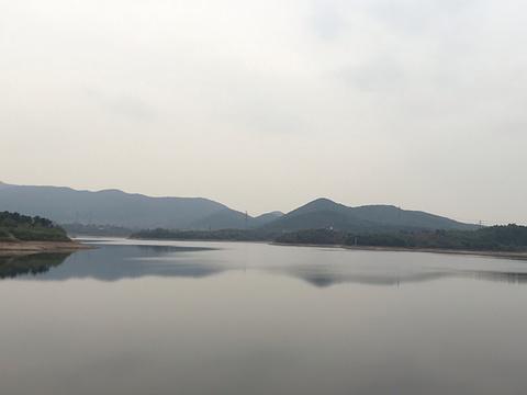 南京市蟠龙湖森林公园旅游景点图片