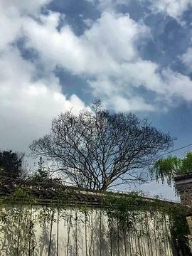 思南县的图片
