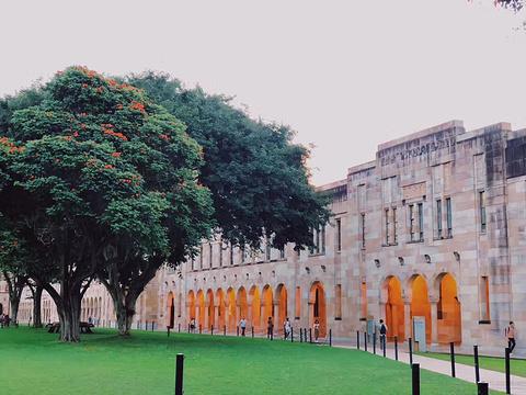 昆士兰大学的图片