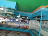 西吉钱币博物馆