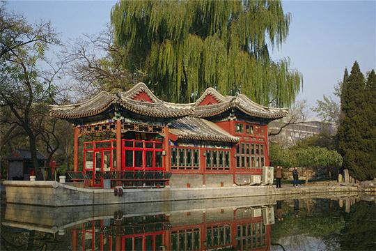 日坛公园旅游景点图片