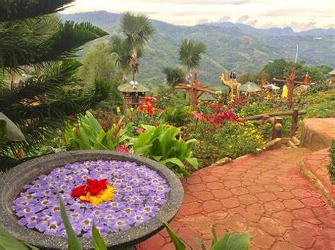 Sirao Garden旅游景点图片