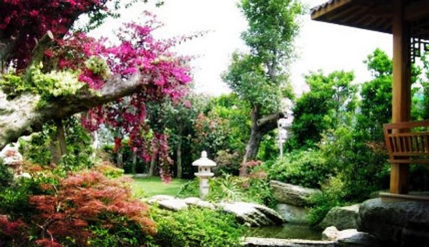 濮阳世锦园旅游景点图片