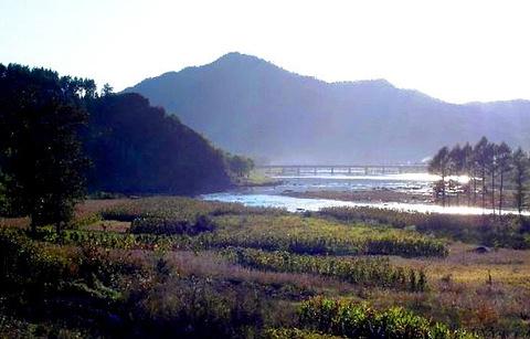 回龙湾国家森林公园