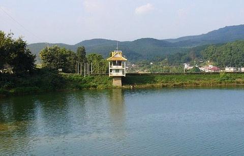 曼飞龙水库