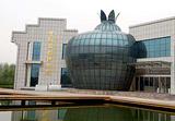 中国石榴博物馆
