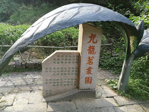 九龙窠旅游景点图片