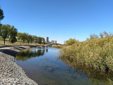 西湖公园的图片