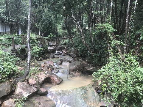 云天海原始森林度假村-凉亭旅游景点图片