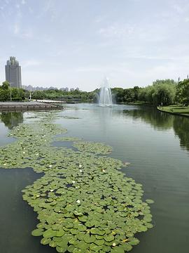 宁波院士公园