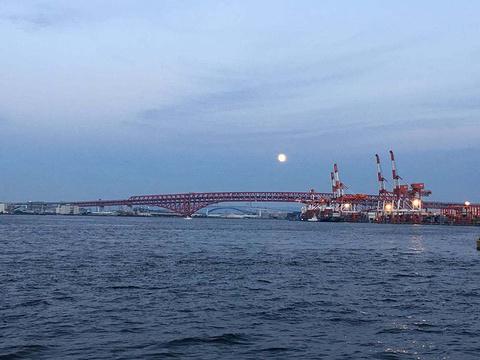 大阪南港海滩旅游景点图片